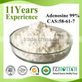 GMP Factory Supply Medical Grade Adenosine powder, low price bulk USP Standard 99% Adenosine