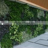hot sale green wall artificial plant wall artificial/fake wall hang plant for indoor/outdoor decorative