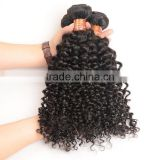 100% Human Braiding Hair Kinky Culry Virgin Hair Mongolian Afro Kinky Human Hair For Braiding