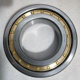 42219 QIBR Precision Cylindrical Roller Bearings
