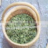 Chinese white pumpkin seeds kernels