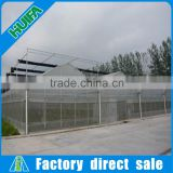 Multi-Span agricultural greenhouses,galvanized steel greenhouse type and single layer arch pipes greenhouse