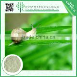 Trustworthy China Supplier herbal extract / snail extract snail powder