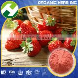 Organic strawberry powder extract | strawberry concentrate powder