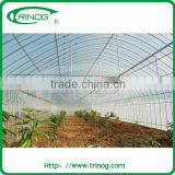 greenhouse ventilation/greenhouse bench