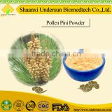 Traditional Chinese Medicine Pollen Pini Powder Pinus thunbergii Parl Pine Pollen