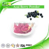 Wholesale Price Acai Berry Juice Powder, Acai Berry Powder in Bulk