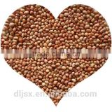 JSX heilongjiang cowpeas price machine sorting hot sale black eye beans and brown eye beans