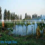 chemical mosquito killer thermal fogger Fogging Machine for pest control ,