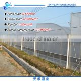 Poly Horticultural greenhouse , Plastic film greenhouse