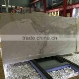 calacatta gold marble slab white marble price in india