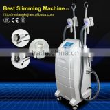 Improve Blood Circulation Renlang Beauty Equipment Body Shaping 2016 Cryolipolysie Machine Fat Reduction