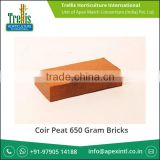 Leading Horticulture Products Manufacturer Exporting Coir Peat 650 gram Bricks