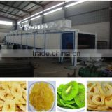 food drying cabinet/ mesh belt dryer/conveyor belting dryer
