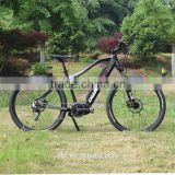 INQUIRY ABOUT Diamondback hidden battery mountain bike, MTB with 8fun 350W mid crank motor