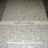 Sea Shell Mother Of Pearl Tile, Slab and Table Top