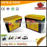 Electric motorbike battery segway scooter x2 36v 14ah battery for e-bike