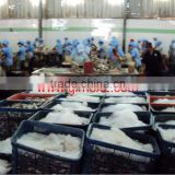 FROZEN ITOYORY SURIMI SEAFOOD