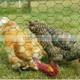 Cheap Chicken cages / Poultry wire mesh/ Hexagonal Wire netting