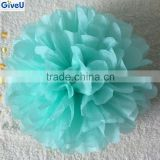2016 Very Popular Mint Green Color D25cm 17gsm Tissue Paper Flower Pom pom Decoration Wedding