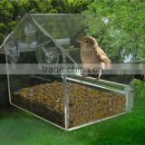wholesale acrylic wild bird seed feeders