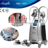 Powerful Cryolipolysis Fat Freeze Slimming Fat Freezing Beauty Machine For Clinic /salon Use Loss Weight