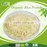 Natural Organic Rice Protein Extract in nutrition enhancers/ Organic Rice Protein Powder