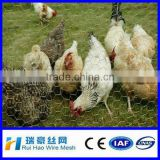 2014 SGS certificated excellent cages for chickens / galvanized hexagonal box with low price
