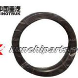 Sinotruk Howo AZ9925520223 Balance Shaft Oil Seal 160*194*10.5