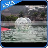 0.8mm Tpu Water Beach Ball , Human sphere water ball For Rental