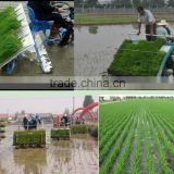 Riding type rice transplanter