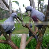 Pigeon decoys,bird decoys,animal deoys ,hunting decoys from China Singrun manufacturing Company