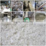 Clear PET bottle flakes AA Grade