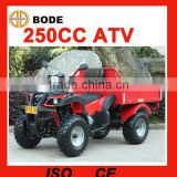New China cheap atv 250cc with trailer(MC-337)