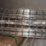 stainless steel welded wire mesh for cages