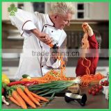 new commercial the best quality mini vegetable slicer dicer