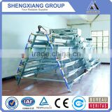 6x3-tier layer manual cages electro galvanized/hot dipped/PVC coated chicken cages/egg laying hen/battery cage for South Africa