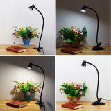Reading Lamp Bedside LED Desk Lamp with Clip