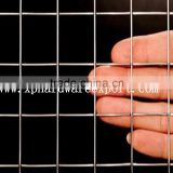 Factory cheap stainless steel welded wire mesh / 304 304L PVC welded wire mesh /316 316L welded wire mesh