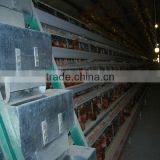 poultry cages SONAPcerticification hot dipped galvanized 20 years lifetime layer chicken cages with Auto water system