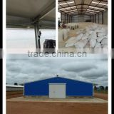 well-design & economic light steel structure chicken shed
