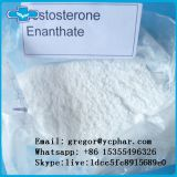 Factory direct hot selling Testosterone Enanthate with high purity cas 315-37-7