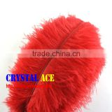 Wholesale Fashion Dyed Ostrich Plumes Feathers, Red Dyed Ostrich Feathers, Party Ostrich Feathers, Different Colours Ostrich
