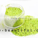 Nail art glitter powder shinning multi-color portable make up your own brand glitter dust