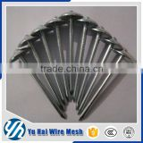 15 degree wire coil galvanized roofing nails                                                                                                         Supplier's Choice