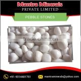 Widely Demanded Pebble Stones for Various Decorative Applications