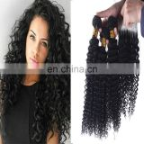 2017 hot sale hair salon chair hair product kinky curly malaysian hair