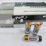 alkaline battery 12v button cell from pro manufacturer