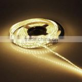 Single color Warm white IP65 waterproof 3528 led strip light