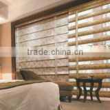 Zebra Blind / Zebra Blind Fabric / Window Blind